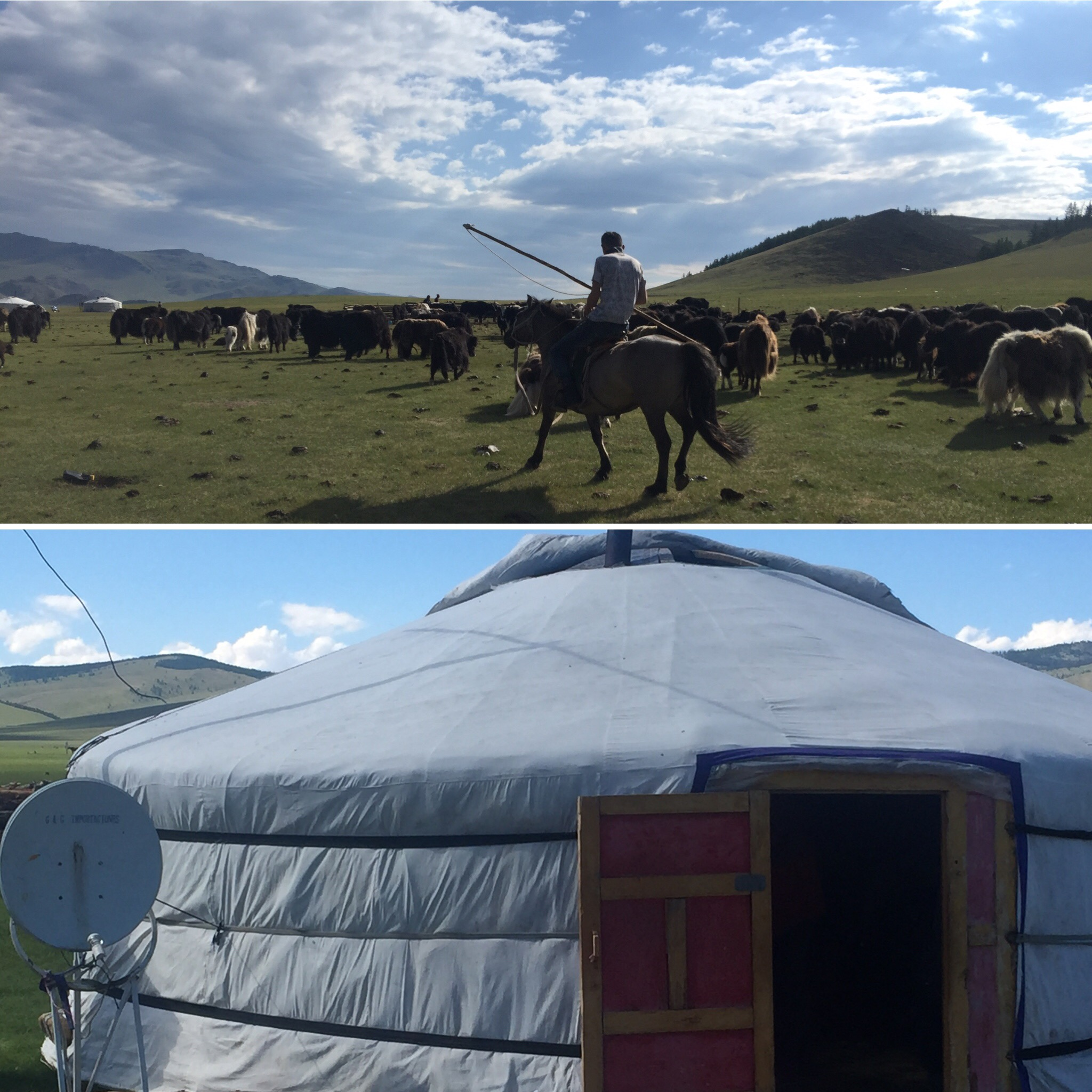 Where Herders Come for Healing